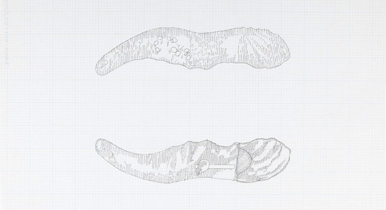 Sketches of the stitcher and pincer tools for operating on Mutant Women, used as a prop in Dead Ringers.
