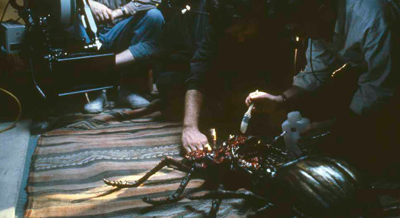Peter Suschitzky looks on as additional touches are added to fighting beetles on the set of Naked Lunch.